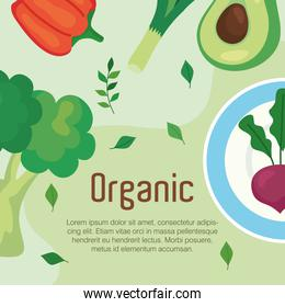 cartel with vegetables organic, concept healthy food