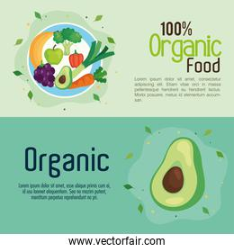 banner with food 100 percent organic, concept healthy food