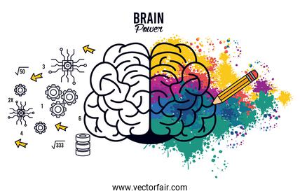 brain power poster with colors splash and set items