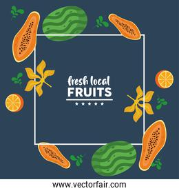 fresh local fruits with watermelons and papayas in blue background