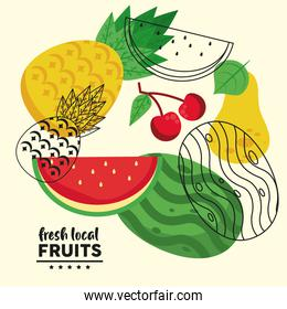 fresh local fruits lettering and set fruits group
