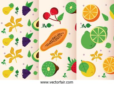 fresh local fruits set of patterns