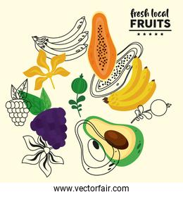 fresh local fruits with bananas and fruits pattern