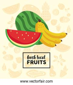 fresh local fruits lettering with watermelon and banana