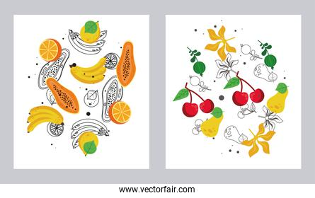 fresh local fruits set of patterns in white background
