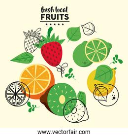 fresh local fruits lettering and group fruits