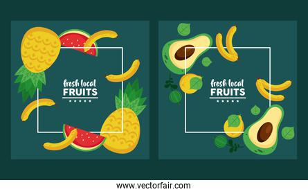 fresh local fruits set of patterns in green background