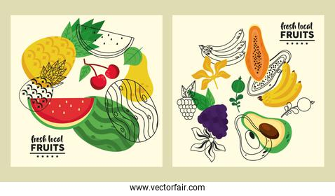 fresh local fruits set of patterns in yellow background