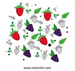 fresh local fruits with grapes and strawberries in white background