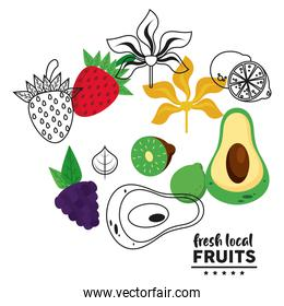 fresh local fruits lettering with set fruits in white background