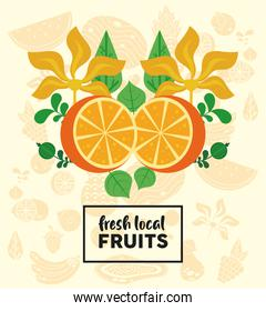 fresh local fruits lettering with oranges and leafs