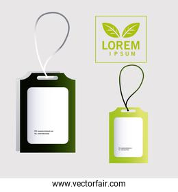 Id card, corporate identity template on white background