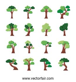 pack of sixteen trees set icons