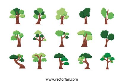 bundle of fifteen trees set icons
