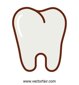 human body tooth anatomy organ health line and fill icon