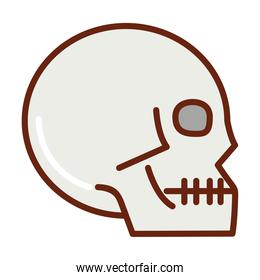 human body skull anatomy organ health line and fill icon