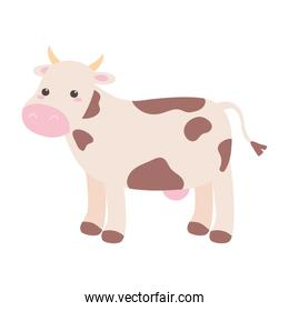 cute cow animal cartoon isolated white background design