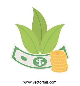 money banknote and coins currency isolated icon white background