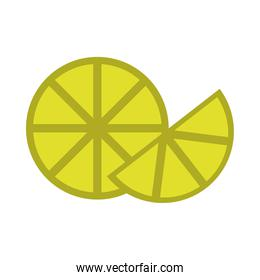 slice lemon citrus fruit tropical flat icon