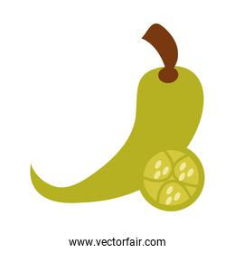 green chili pepper vegetable spice food flat icon