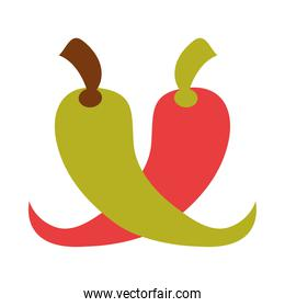 green and red chili pepper vegetable spice food flat icon