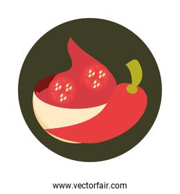 mexican spice chili pepper food block and flat icon