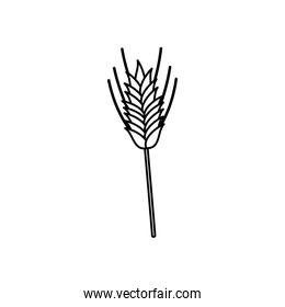 wheat ears icon, line style
