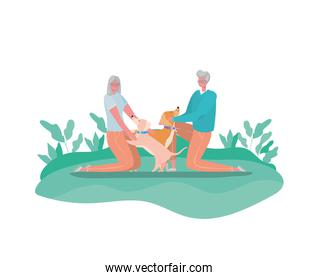 Senior woman and man cartoons with dogs at park vector design