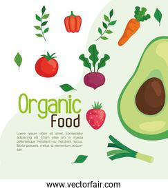 poster with organic food, vegetables and fruits, concept healthy food