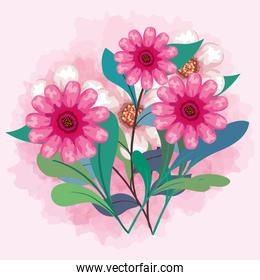cute flowers color pink with branches and leaves, natural decoration