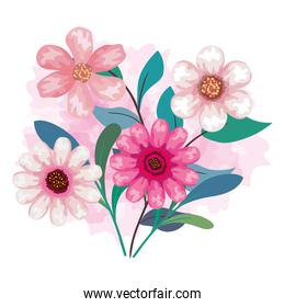 flowers color pink with branches and leaves