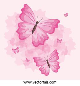set of cute butterflies icons