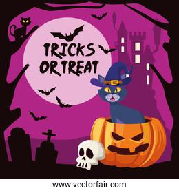 halloween tricks or treat lettering with cat in pumpkin and castle