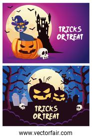 halloween tricks or treat lettering with cat and pumpkin in cemetery scenes