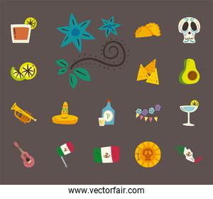 mexican flowers and free form style icon set vector design