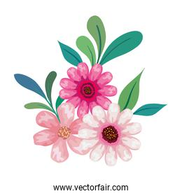pink flowers drawing with leaves vector design