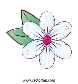 white flower with leaves vector design