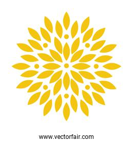 yellow abstract flower vector design