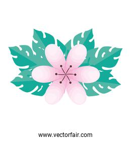 pink flower with leaves vector design
