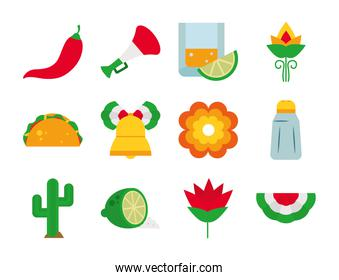 flowers and mexico icon set, flat style