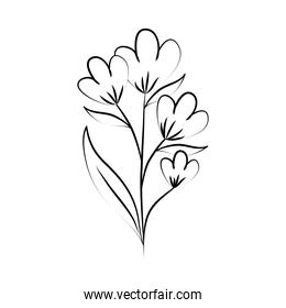minimalist tattoo flower line art herb and leaves hand drawn floral