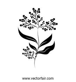 minimalist tattoo flower berries branch silhouette art herb and leaves
