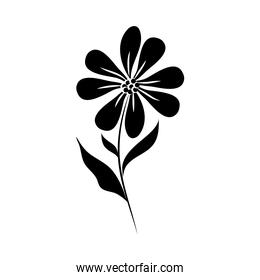 minimalist tattoo flower natural silhouette art herb and leaves