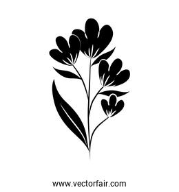 minimalist tattoo flower silhouette art herb and leaves hand drawn floral