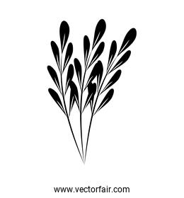 minimalist tattoo branches sketch floral silhouette art herb and leaves