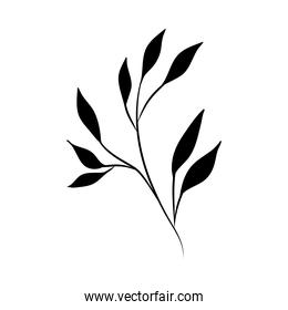 minimalist tattoo rustic branch flora silhouette art herb and leaves