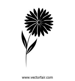 minimalist tattoo flower daisy nature silhouette art herb and leaves