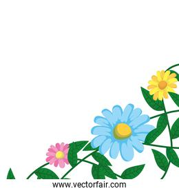 flowers garden in branch with leafs nature icon