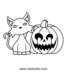 halloween pumpkin face with black cat line style icon