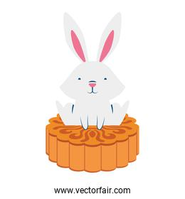 cute easter little rabbit with chinese coin character